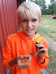 Pet Rat Snake Earring - Eastern Shore Experience