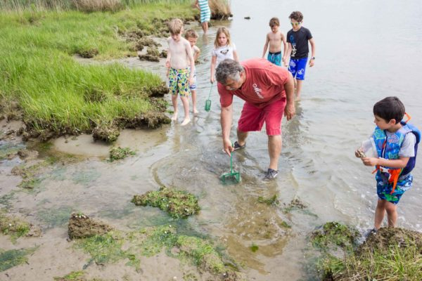 Backyard Adventure Tours Eastern Shore Experience