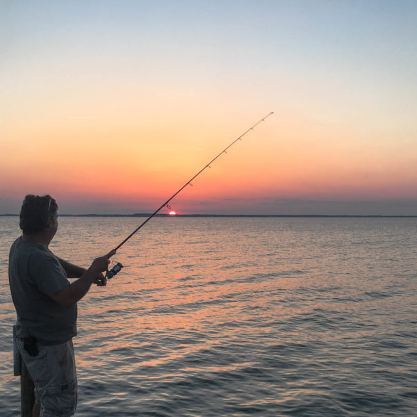 Summer Shoreline and Fishing Tour Eastern Shore Experience